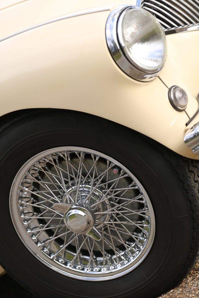Gorgeous 1956 Austin Healey BN2 4spd + overdrive For Sale (picture 5 of 6)