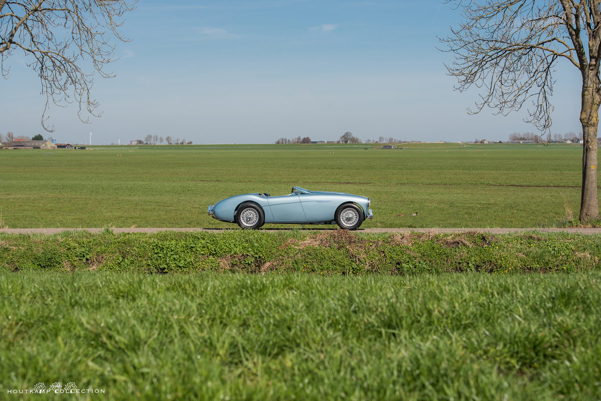 1953 AUSTIN HEALEY 100-4, Mille Miglia eligible For Sale (picture 3 of 6)