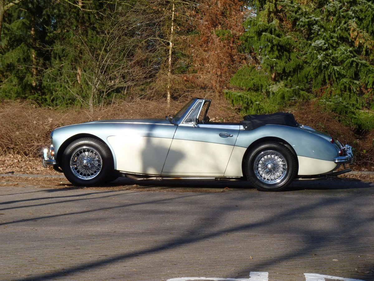 1966 Beautiful restored Austin Healey 3000 MKIII Ph2 Restored! For Sale (picture 3 of 6)