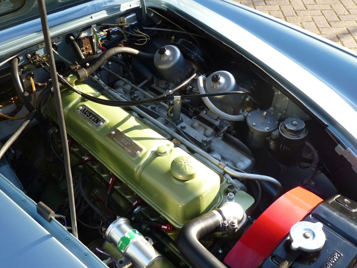 1966 Beautiful restored Austin Healey 3000 MKIII Ph2 Restored! For Sale (picture 6 of 6)