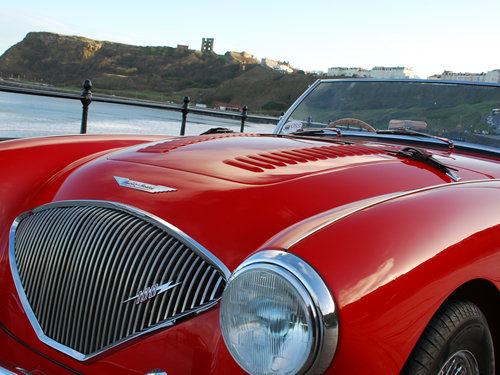 Austin Healey 100/4 BN1 1955.  For Sale (picture 5 of 6)