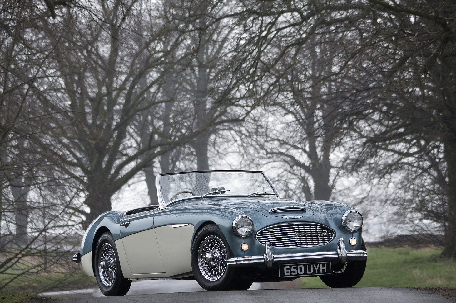 1959 Austin Healey 3000 MKI BN7 2-Seater For Sale (picture 6 of 6)