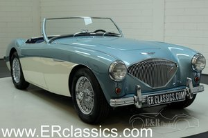 Austin Healey 100-4 BN2 1955 restored For Sale