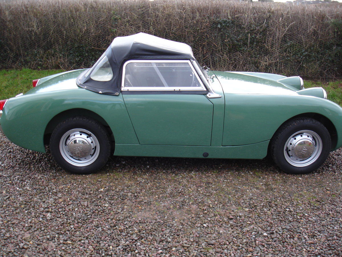 1959 AUSTIN HEALEY SPRITE MK 1 (FROGEYE). For Sale (picture 3 of 6)