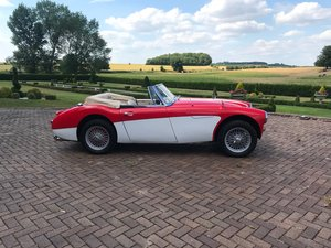 1967 Healey 300 MK III BJ8 For Sale