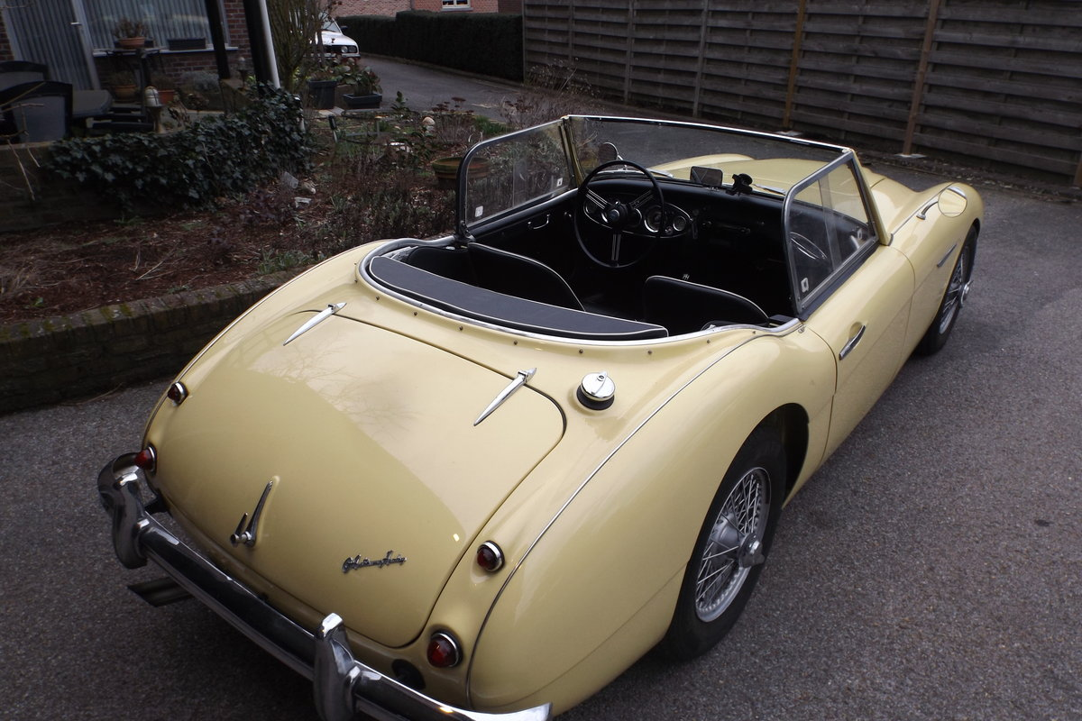 1956 Austin Healey 100 Six For Sale (picture 1 of 4)