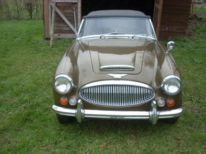 1967 Austin Healey BJ8 Limited Edition Golden Beige 500 For Sale