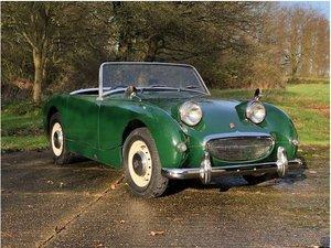 1959 Austin Healey Mk1 Sprite (Frogeye) For Sale