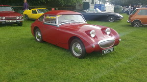1959 Austin Healey Frogeye Sprite For Sale