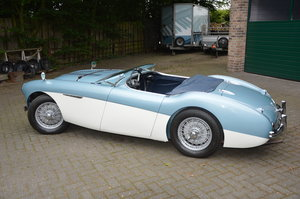 1954 Austin Healey 100/4 BN1 with Le Mans kit For Sale