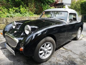1960 Austin Healey Frogeye For Sale