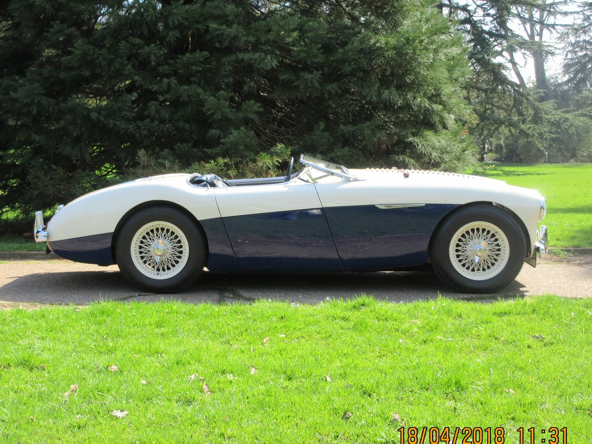 1956 Austin Healey BN2 Full M Spec For Sale (picture 1 of 6)