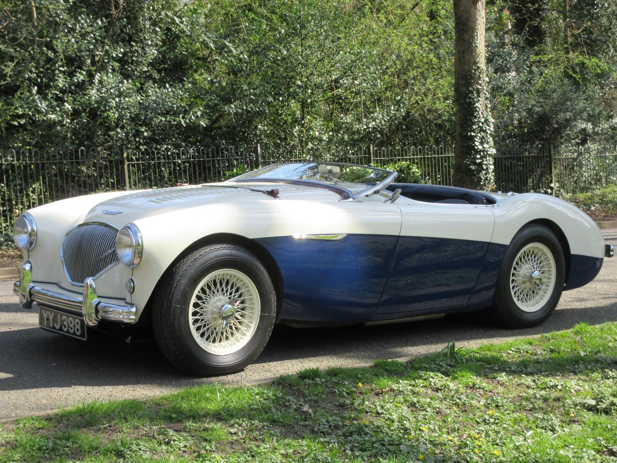 1956 Austin Healey BN2 Full M Spec For Sale (picture 3 of 6)