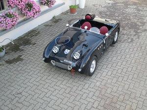 1959 Austin Healey Frog Eye RACE CAR For Sale