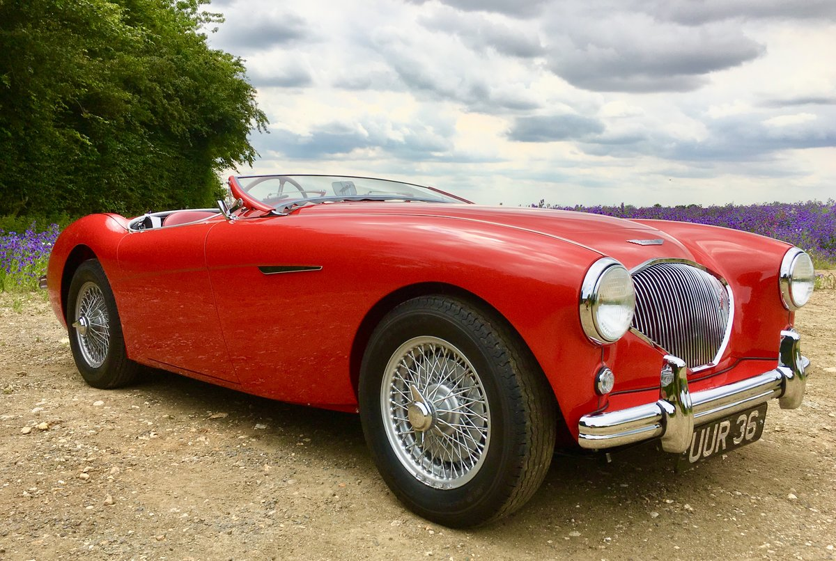 1955 Austin Healey 100/4 For Sale (picture 1 of 6)