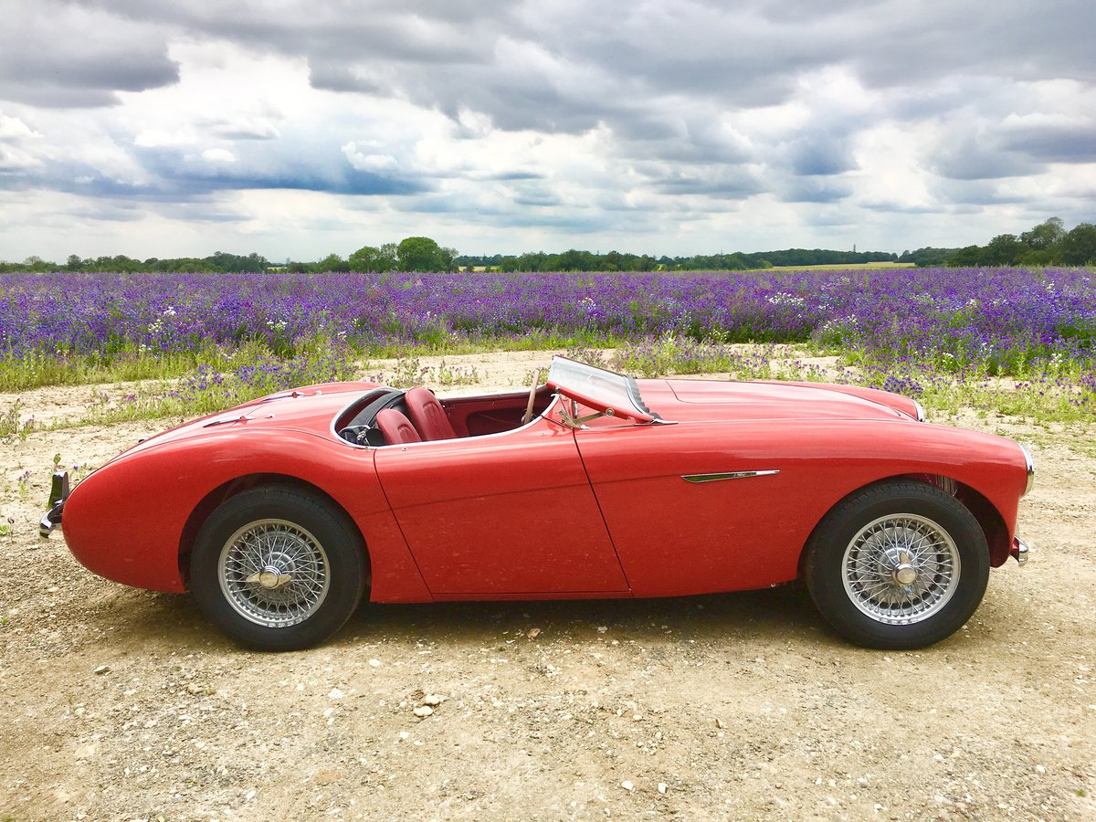 1955 Austin Healey 100/4 For Sale (picture 2 of 6)
