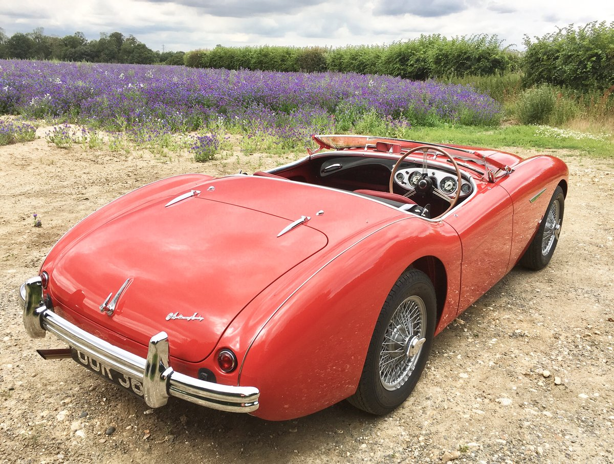 1955 Austin Healey 100/4 For Sale (picture 3 of 6)