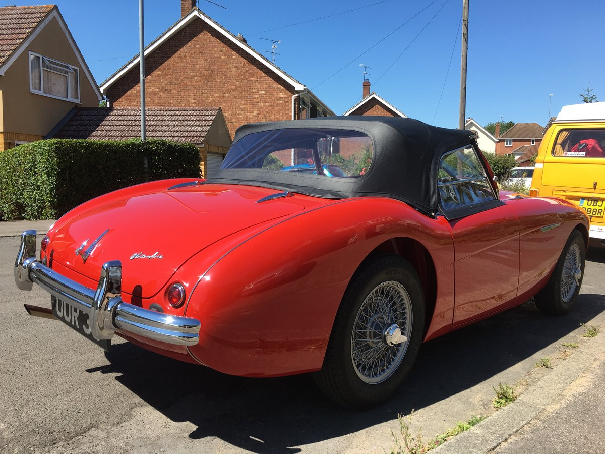 1955 Austin Healey 100/4 For Sale (picture 6 of 6)
