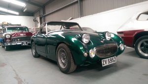 1960 Austin Healey frogeye sprite rally prepped
