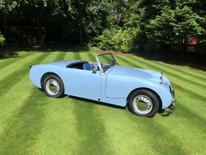 1959 Austin Healey Frogeye Former Concours Winning For Sale