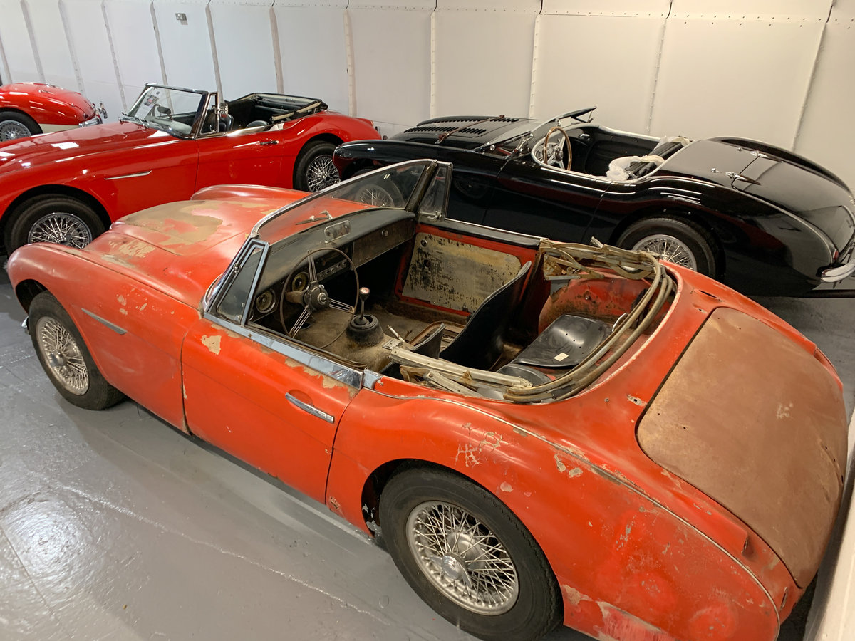 1963 Austin Healey 3000 MkIIA (BJ7) Project SOLD (picture 3 of 6)