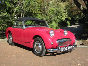 LHD 1959 Austin Healey Frogeye Total Nut and Bolt Rebuild
