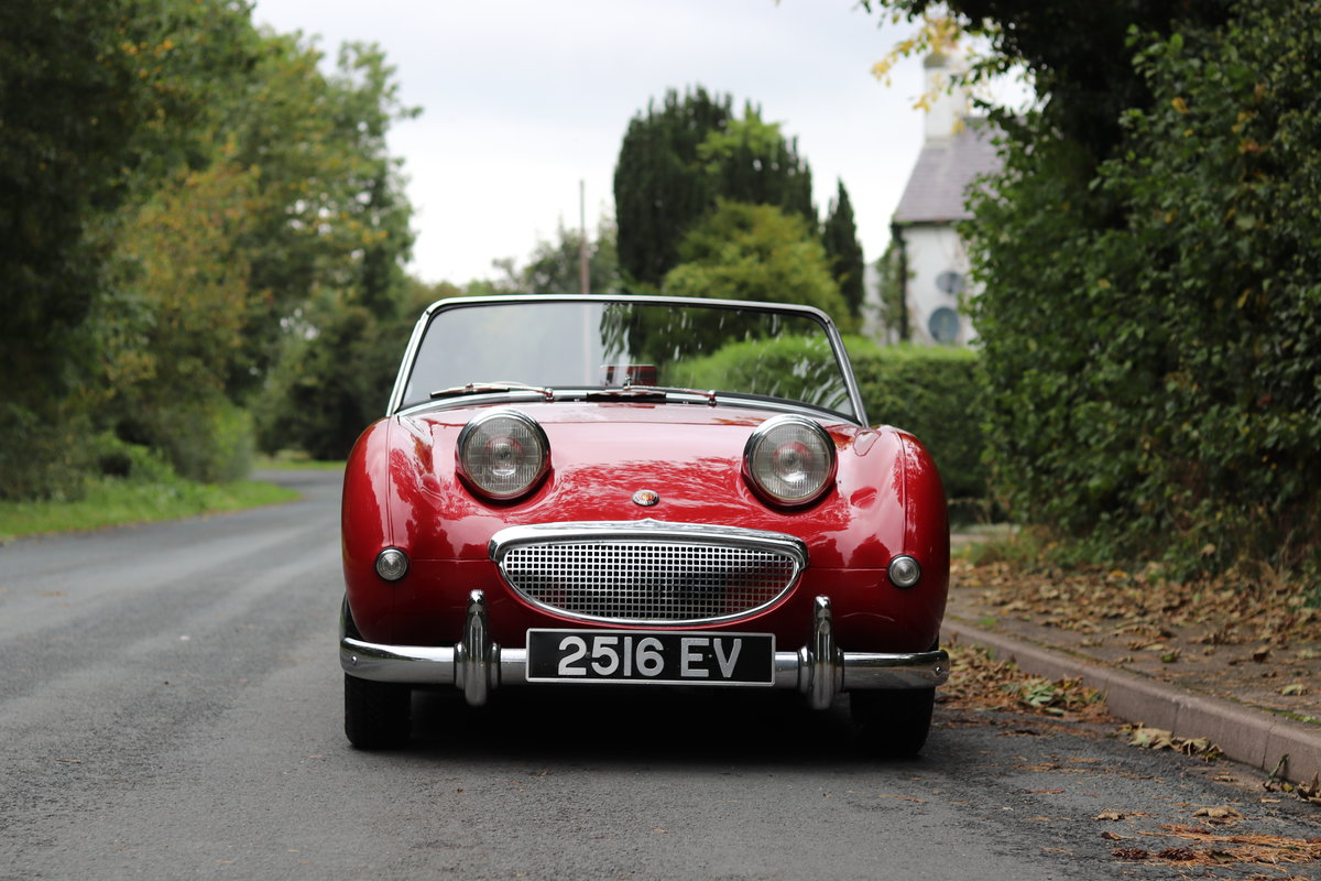 1959 Austin Healey Frogeye Sprite MKI - Lovely older restoration  For Sale (picture 2 of 16)