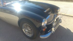 Picture of 1964 Austin healey 300 mk ii