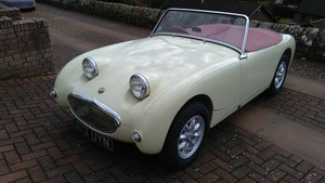 1959 Austin Healey MK1 FrogeyeSprite For Sale