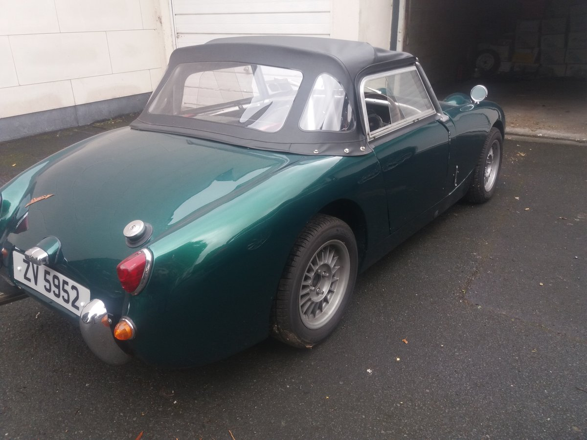 1960 Austin Healey frogeye sprite rally prepped For Sale (picture 6 of 6)