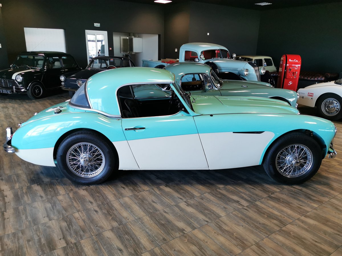 1957 AUSTIN HEALEY 100/6 For Sale (picture 3 of 5)