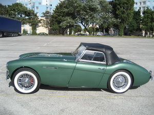1955 Austin Healey 100/4 BN1 Immaculate For Sale