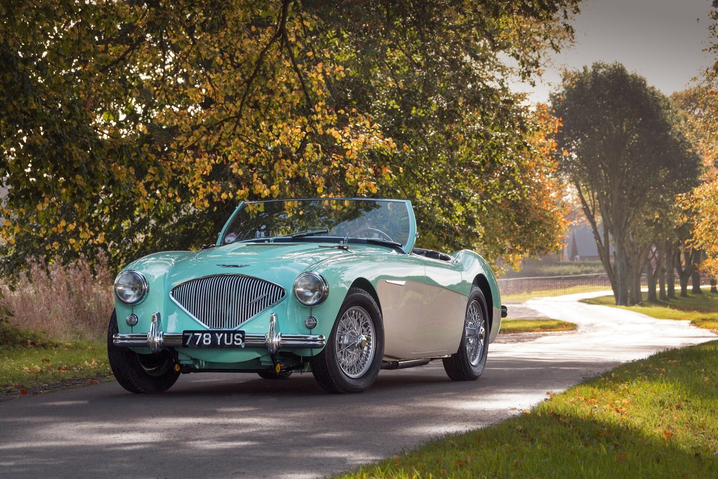 Austin Healey 100/4 - 1956 BN2 Factory Le Mans 100M For Sale (picture 1 of 6)