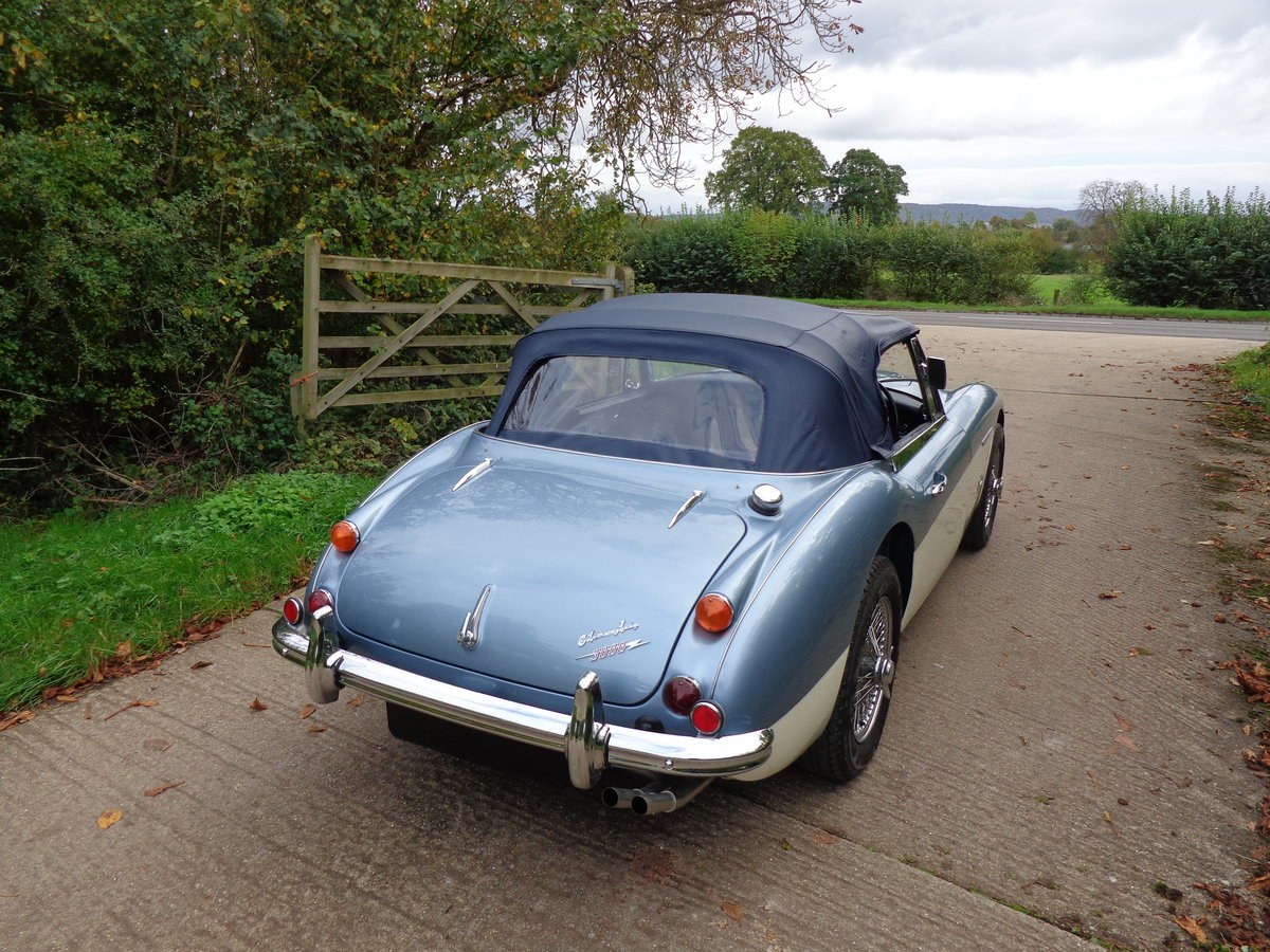 1966 AUSTIN HEALEY 3000 MK 3 PH 2 -  THE BEST OF THE BEST! For Sale (picture 5 of 6)