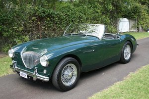 1956 Austin-Healey 100 BN2 For Sale