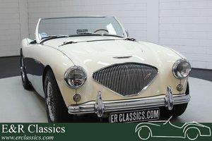 Austin Healey 100-4 BN2 1956 Le mans modification