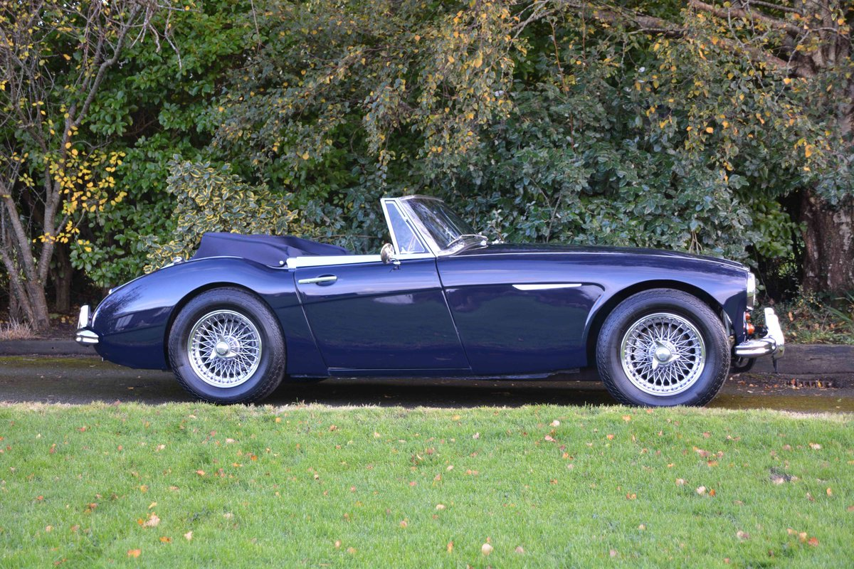 1963 Austin Healey 3000 MKII BJ7 For Sale (picture 3 of 6)