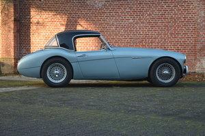 1959 Austin Healey RHD