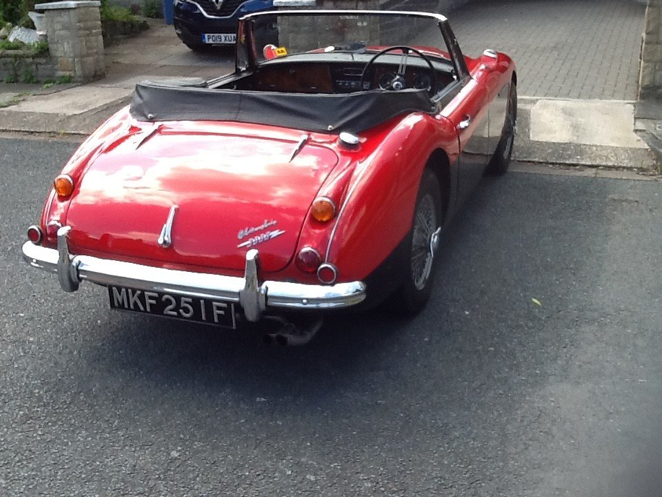 1967 Austin Healey 3000 - Very Low Mileage For Sale (picture 3 of 6)
