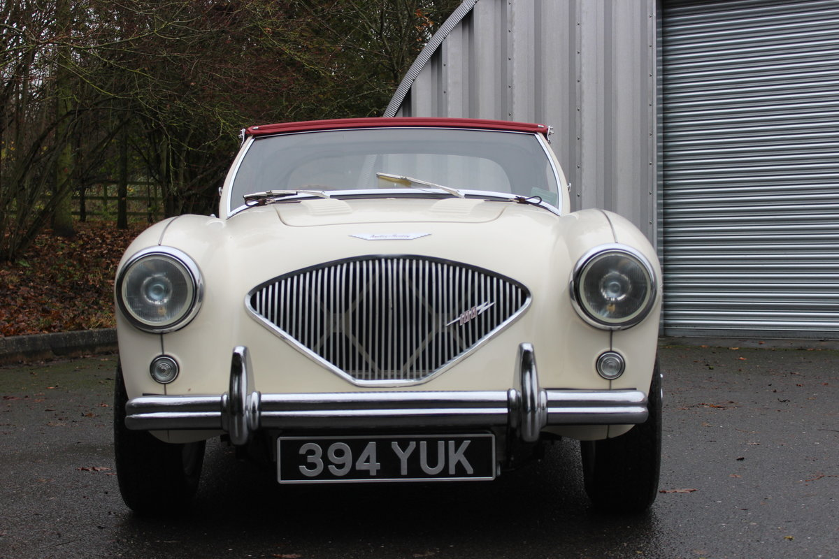 1955 AUSTIN HEALEY 100/4 BN1. For Sale (picture 2 of 6)