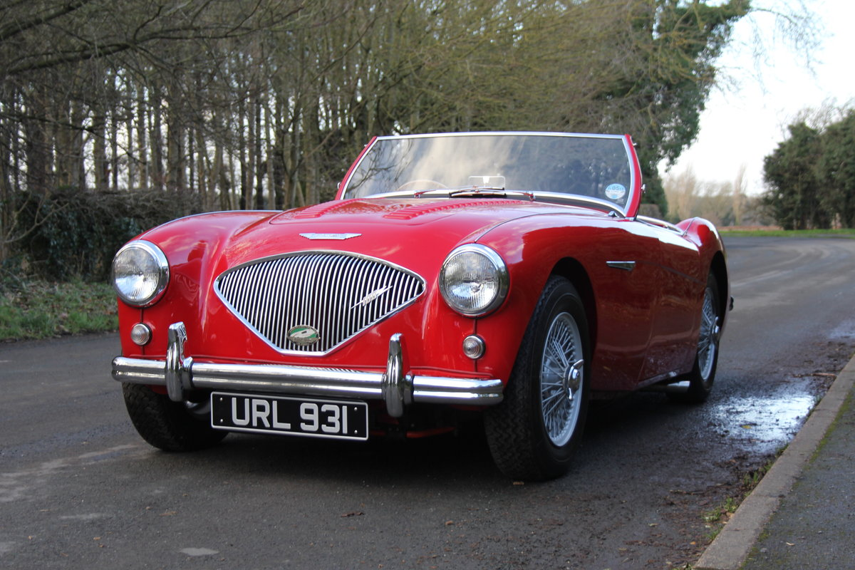 1955 Austin Healey 100-4 BN1 - Matching No's Beautifully Restored For Sale (picture 3 of 21)