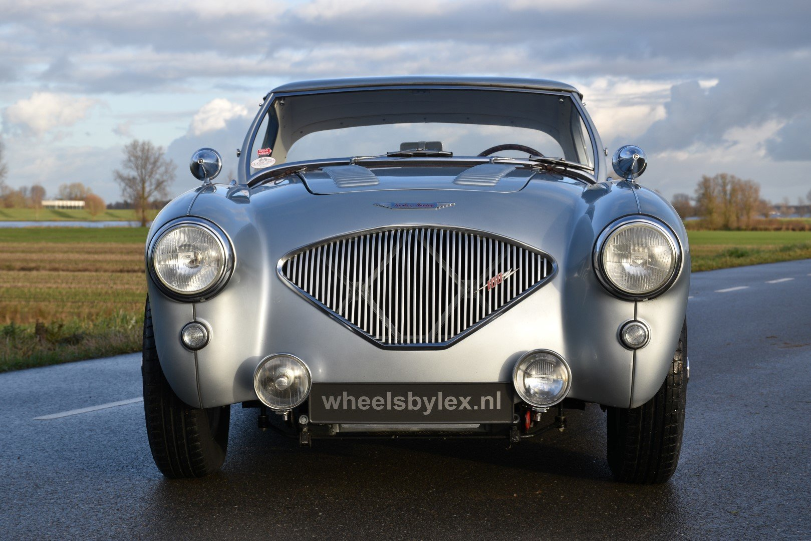 1955 Austin Healey 100-4 BN1  For Sale (picture 2 of 6)