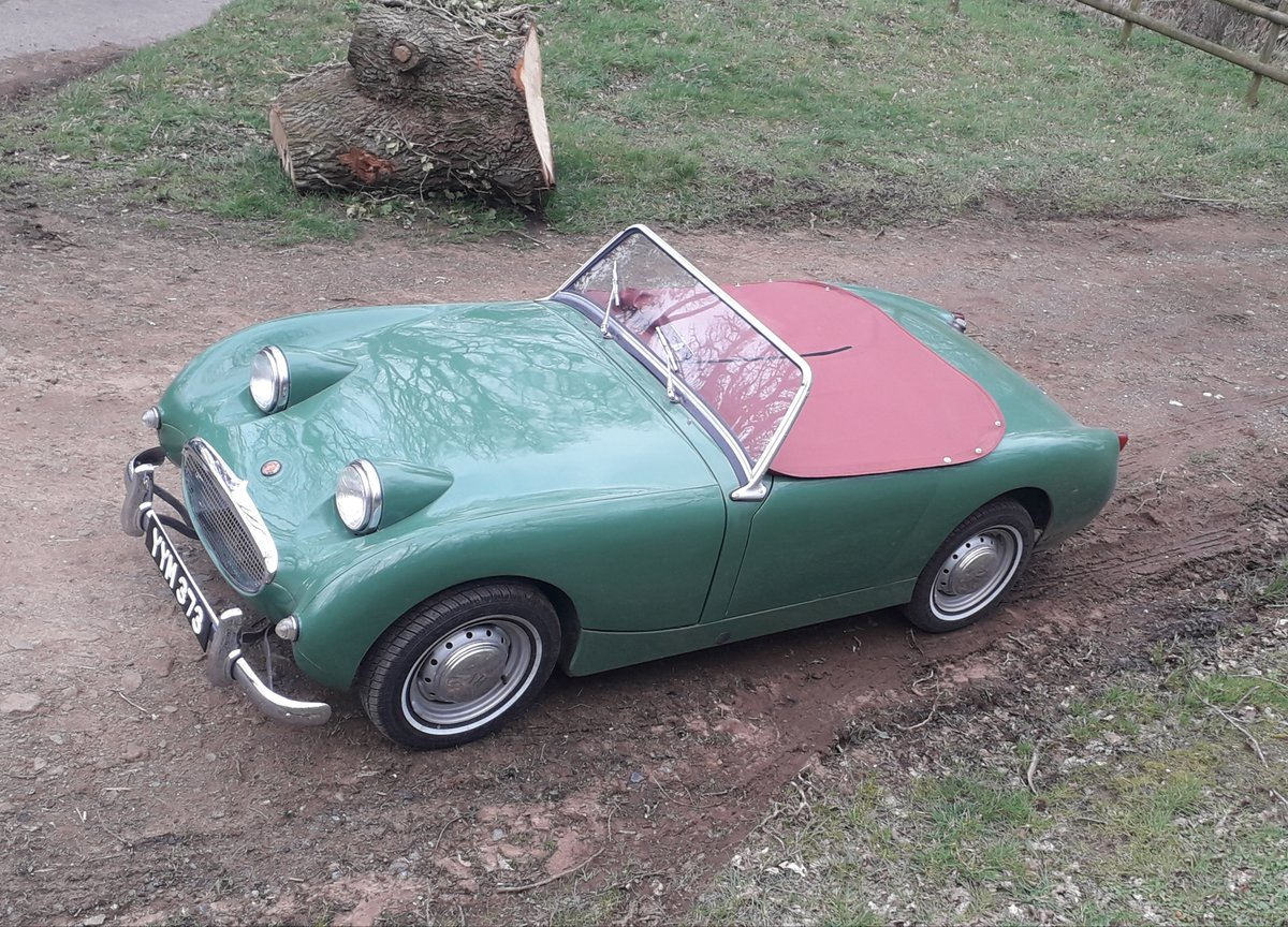 1960 Austin Healey Frogeye Sprite For Sale (picture 1 of 6)