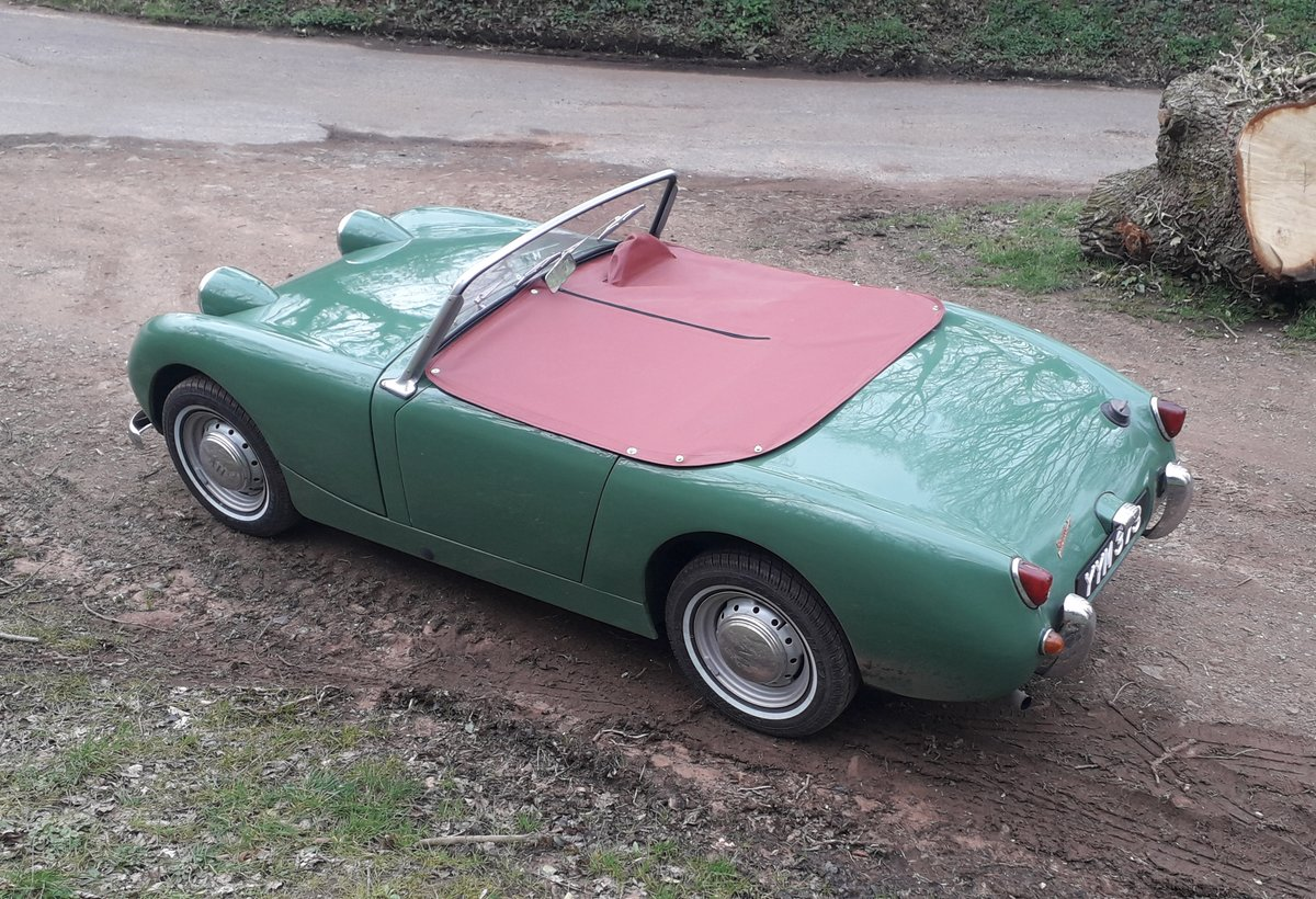 1960 Austin Healey Frogeye Sprite For Sale (picture 2 of 6)