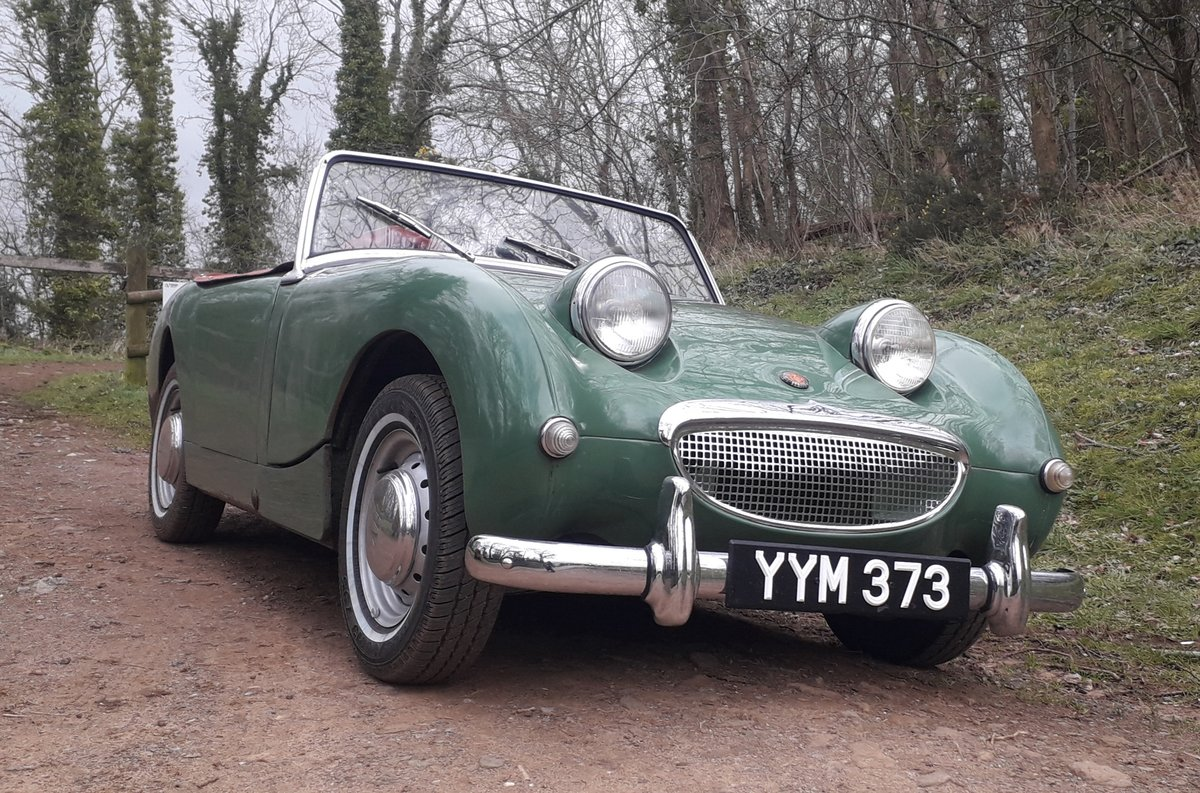 1960 Austin Healey Frogeye Sprite For Sale (picture 6 of 6)