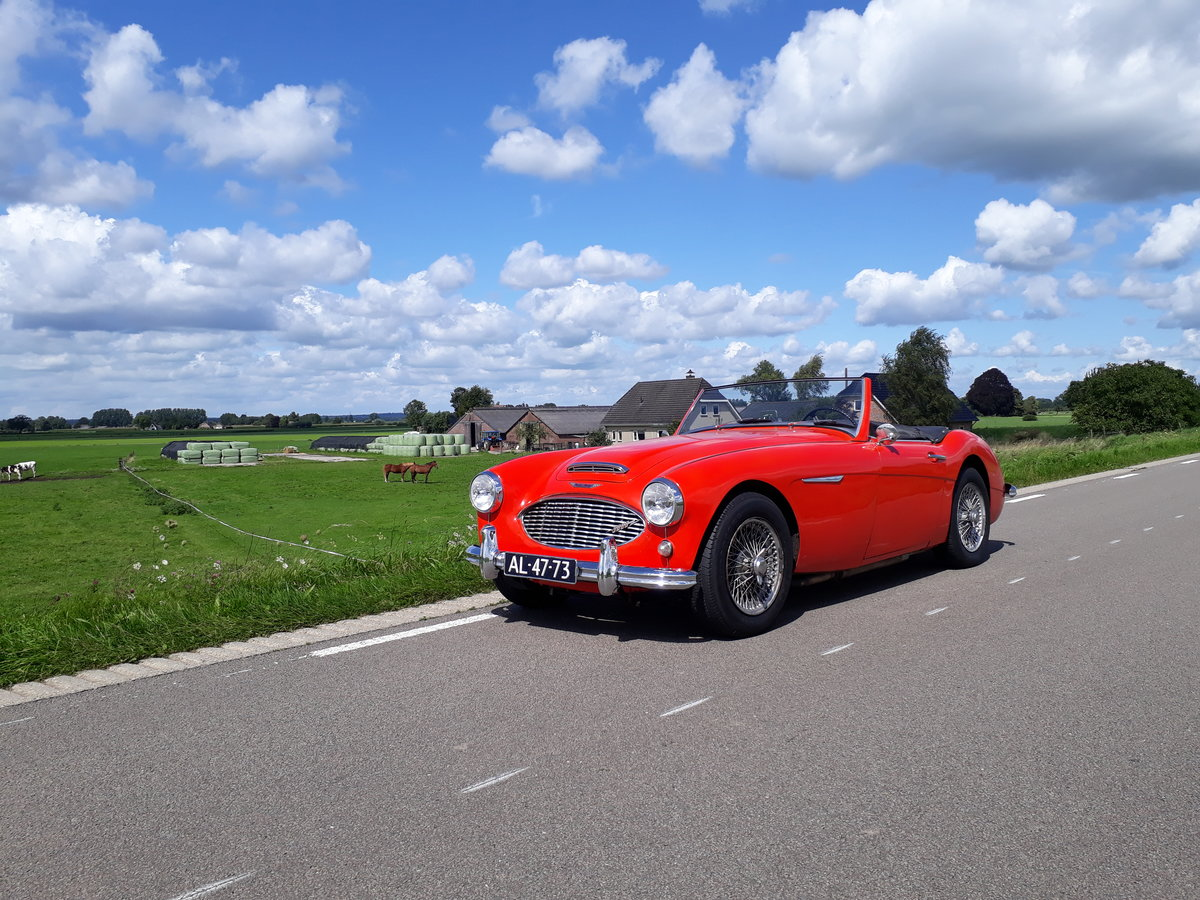 Austin Healey MK1 1961 For Sale (picture 6 of 6)