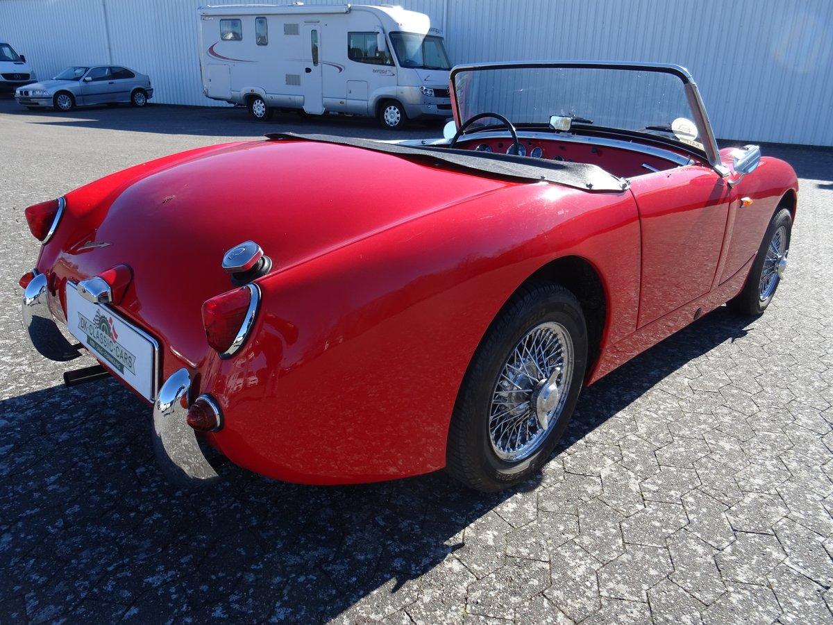 1959 Austin-Healey Sprite Mark I For Sale (picture 2 of 24)