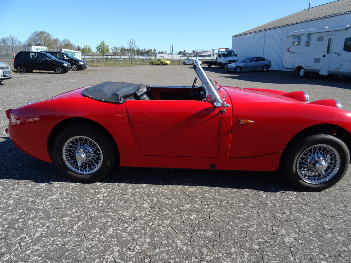 1959 Austin-Healey Sprite Mark I For Sale (picture 5 of 24)
