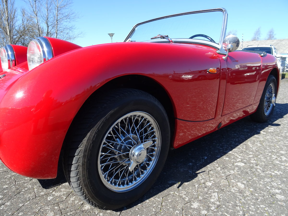 1959 Austin-Healey Sprite Mark I For Sale (picture 10 of 24)