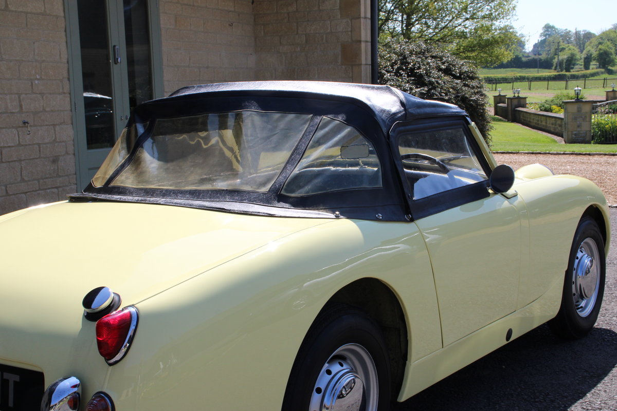 1958 AUSTIN HEALEY FROGEYE (BEST AVAILABLE)  For Sale (picture 4 of 20)